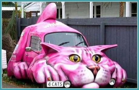 Розовый котяра